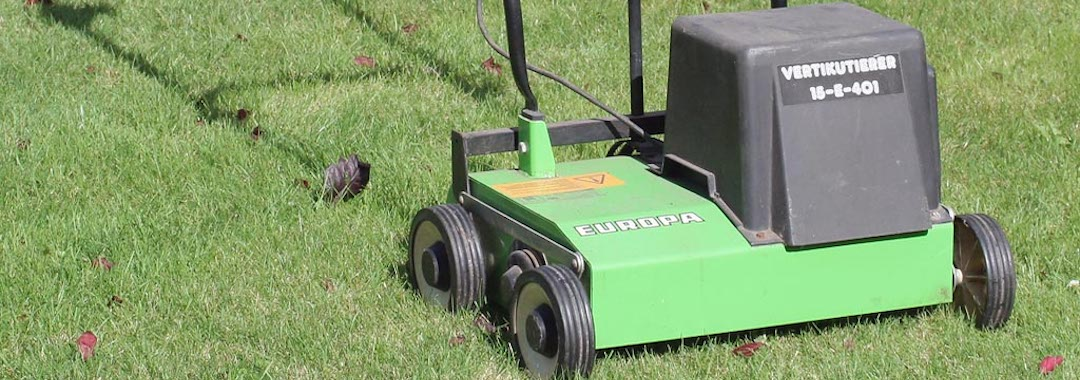 lawn scarifier lawn