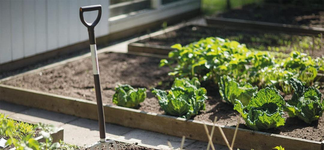 Best Garden Forks Banner Image