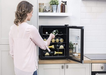 10 Best Mini Fridges in 2019