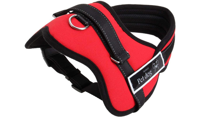 Aulola Soft Padded Dog Harness