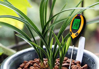 10 Best Soil Testing Kits in 2019