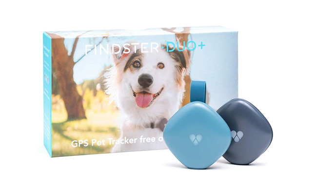 Findster GPS Tracking Collar for Dogs & Pet Activity Monitor