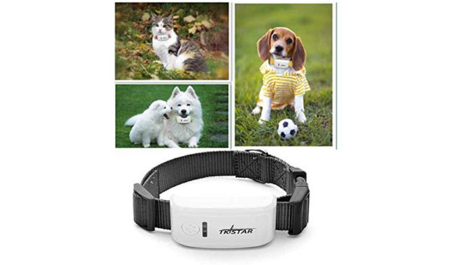 Hangang GPS Tracker for Medium Dogs and Cats