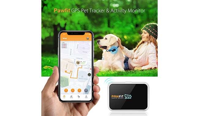 Pawfit GPS Pet Tracker