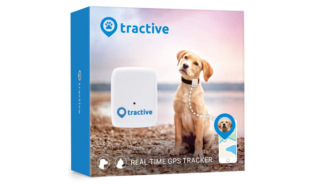 Tractive Dog GPS Tracker –A Device With Unlimited Range