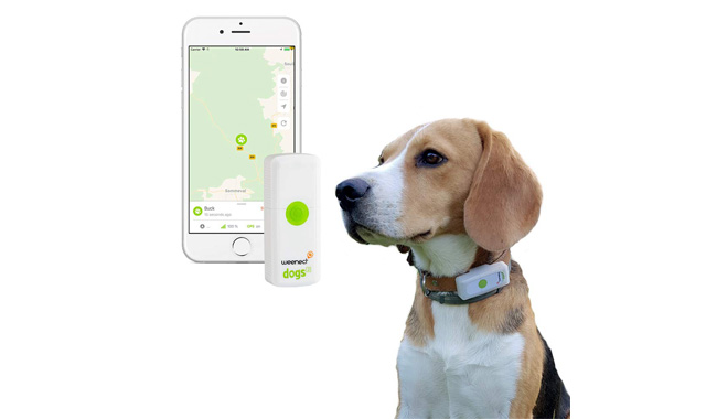 Weenect Dogs GPS Tracker for Dogs
