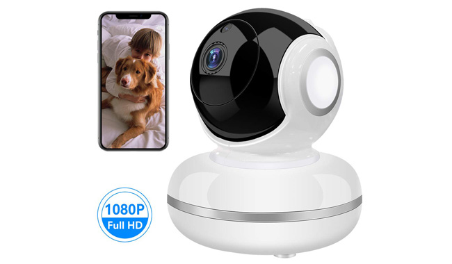Wi-Fi IP Camera Motion Activated for Pet