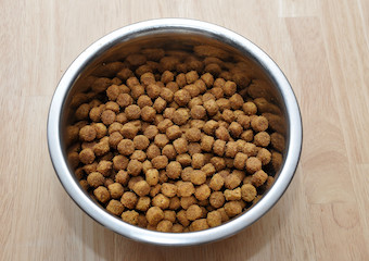 10 Best Dry Dog Foods in 2020