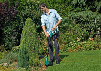 10 Best Grass Strimmers in 2019