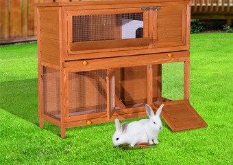 10 Best Rabbit Hutches in 2020