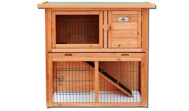 Confidence Rabbit Hutch