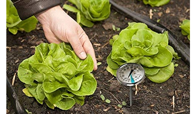 SmartChoice Premium Stainless Steel Soil Thermometer