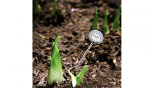 youngfate Stainless Steel Compost Thermometer