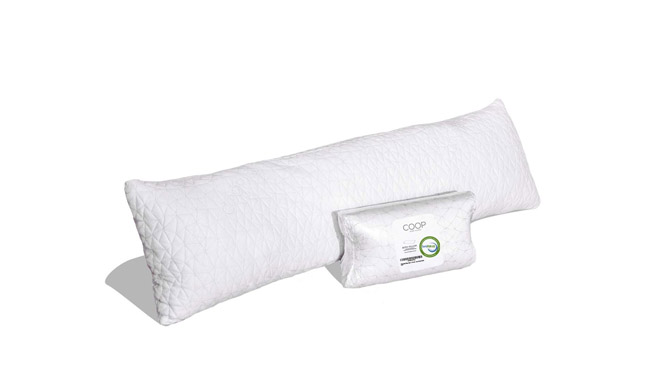 Coop Home Goods body pillow