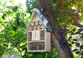 10 Best Bug Hotels in 2020