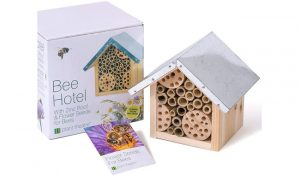 Plant Theatre Bee Hotel & Flower Seeds