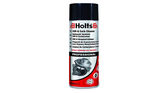 Holts EGR & Carb Cleaner