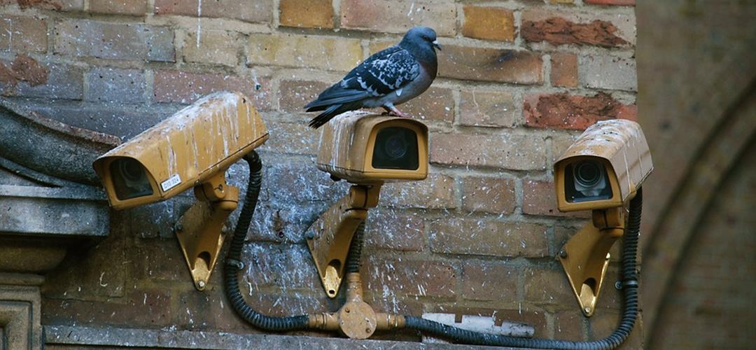 Best Dummy CCTV Cameras Banner Image