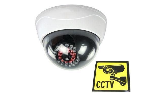 Ex-Pro Dummy CCTV Camera