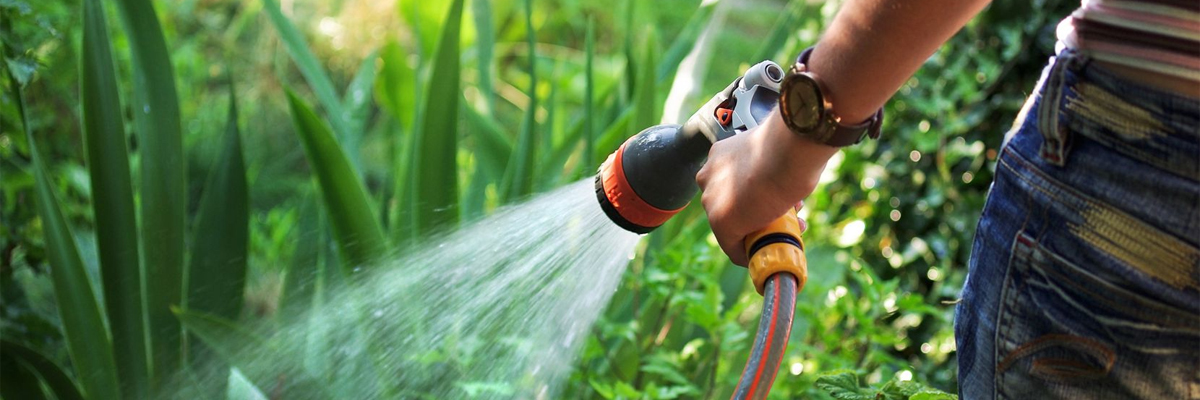 What Is The Best Garden Hose On The Market Image 1